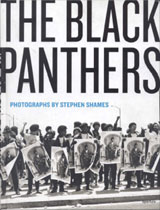 The Black Panthers Book